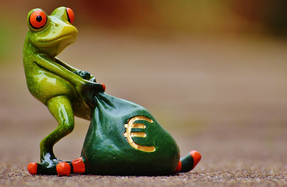 blog-rana-dinero